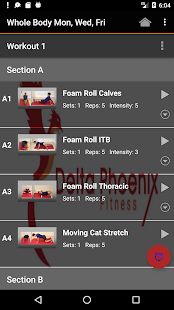 Delta Phoenix Fitness APK for Kindle Fire