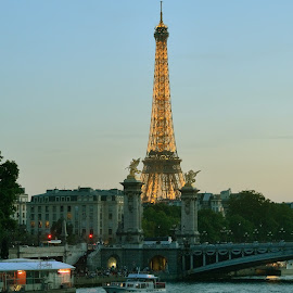 Eiffel Tower by Stephen Beatty - Buildings & Architecture Statues & Monuments