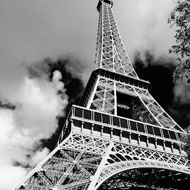 by Elena Stanescu-Bellu - Buildings & Architecture Architectural Detail ( paris, structure, tour eiffel, tall, iron )