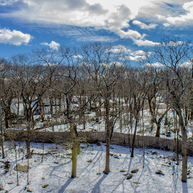Quincy Weather  by Harish Kumar K - Landscapes Weather ( canon, clouds, skyline, dry, chill, frozen, landscape, storm, lens, 18mm, cold, nature, freeze, quincy, snow, trees, scene, weather )