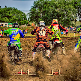 Go Go Go ! by Marco Bertamé - Sports & Fitness Motorsports ( 116, five, 44, speed, rear, full power, number, race, 12, 10, motocross, start, dust, eighty, clumps, 80, accelerating, crowded, competition )