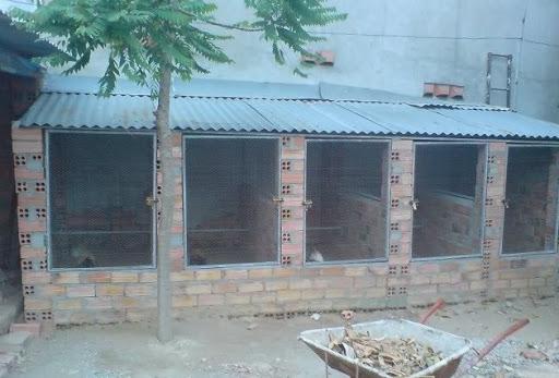 Cach-lam-chuong-ga-tre-don-gian-ma-hieu-qua 8526497765