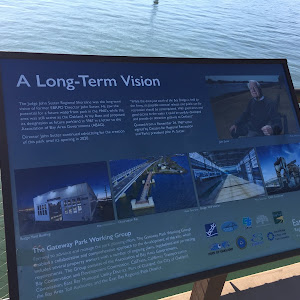 A Long-Term Vision