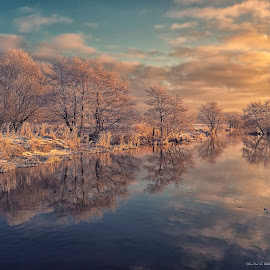 There was never a night or a problem that could defeat sunrise or hope by Inna Fangel - Landscapes Weather ( reflection, natural light, winter, ice, water, park, colors )