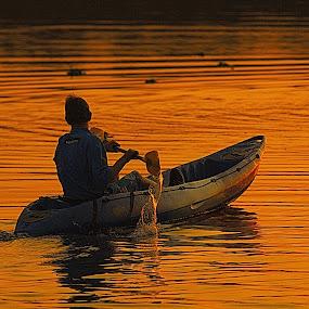 Rowing at last sunset by Johann Fouche - Transportation Boats ( water, sunset, dam, canoe, boat )