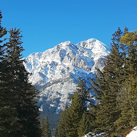 Jasper Alberta by Natasha Lena - Landscapes Mountains & Hills ( countryside, mountains, winter, alberta, large )