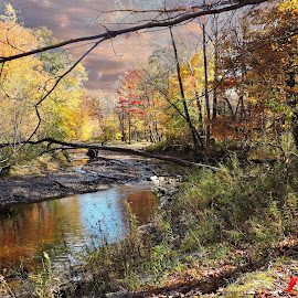 Autumn creek by Melissa Davis - City,  Street & Park  City Parks ( water, creek, fall, painesville ohio, lake metro park )
