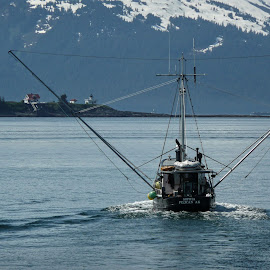 Fishing Boat in Alaska by Kim Jackson - Transportation Boats ( mountains, alaska, ocean, fishing, boat )