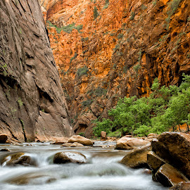 Hiking the Narrows by Nancy Arehart - Landscapes Caves & Formations ( national park, narrows, canyon, zion, hiking,  )