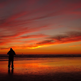 Shooter Alone  by Rob Hallifax - Landscapes Waterscapes ( #sunsets #landscape #pacificocean #oceanside #ca #singleperson )