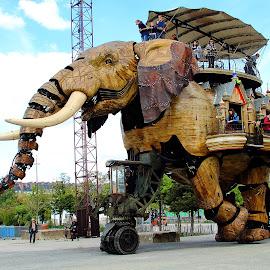 Un éléphant ça trompe by Gérard CHATENET - City,  Street & Park  Street Scenes