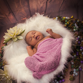 Dreaming start by Shashi Patel - Babies & Children Toddlers ( babies, shashiclicks, shashipatel, bucket, infant, kids, flowers )