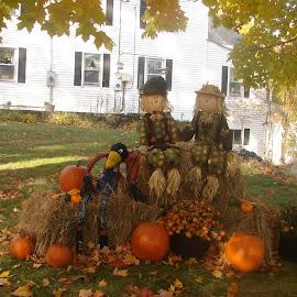 Halloween display by Stephen Deckk - Public Holidays Halloween