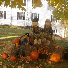 Halloween display by Stephen Deckk - Public Holidays Halloween (  )