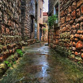 by Petar  Botteri - City,  Street & Park  Historic Districts