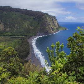 Waipio Lookout by Trevor Fairbank - Landscapes Travel ( green, beautiful, waipio, travel, landscape, hawaii, waipio lookout )