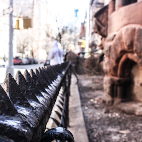 by Lena DeStefano - City,  Street & Park  Street Scenes