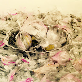 Pink petals by Unknown - Food & Drink Ingredients ( color still life hand paintef )