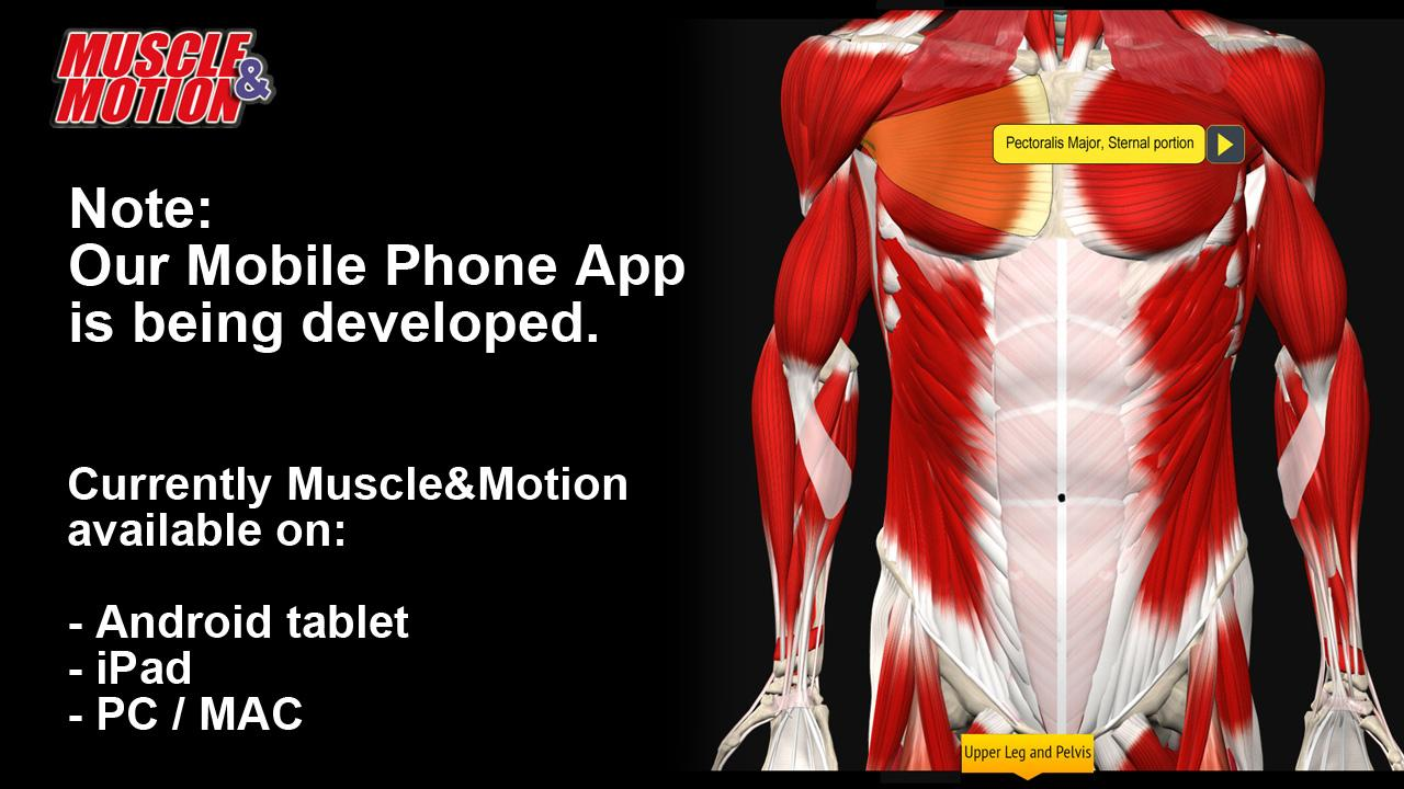 Muscle And Motion Anatomy App