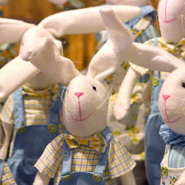 Easter Bunnies  by Lorraine D.  Heaney - Public Holidays Easter