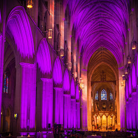 Interior of the Washington National Cathedral by Gary Hanson - Buildings & Architecture Places of Worship ( interior, lighting, wedding, arches, columns, historical, washington national cathedral. )