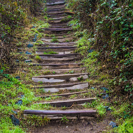 Step by Ioannis Sotirakos - City,  Street & Park  Street Scenes ( stairs, nature, saturation, green, steps )