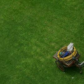 The Greenfield by Ananda Mohan Paul - City,  Street & Park  Street Scenes ( #minimalism, #landscape, #greenery, #field, #van )