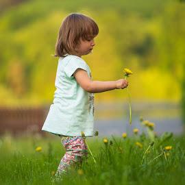 Girl by Michael Eberth - Babies & Children Children Candids ( children, candid, girl, summer, child, kids, flower, dandelion )