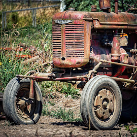 Farmall  by Todd Reynolds - Artistic Objects Industrial Objects