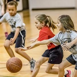 by Jackie Eatinger - Sports & Fitness Basketball ( yasmin basketball, aleycia )