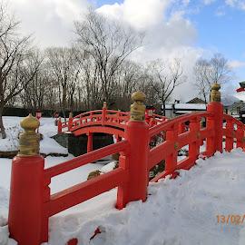 The red bridge by Alice Chia - City,  Street & Park  City Parks ( red, snow, trees, japanese, bridge,  )