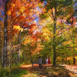 Autumn colors by Morris Fremar - City,  Street & Park  City Parks