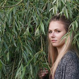 In the trees by Donna Davis Kasubeck - Uncategorized All Uncategorized (  )