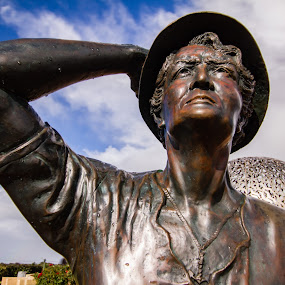 Searching for the lost by Tony Burnard - Buildings & Architecture Public & Historical ( bronze, statue, memorial, lady, sydney )