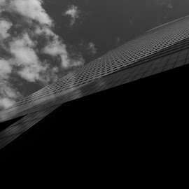 Citi Building  by Victor Mirontschuk - Buildings & Architecture Office Buildings & Hotels ( abstract, office, building, b&w, architecture )