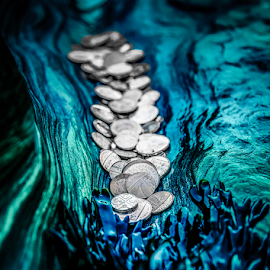 Valley of coins by Michael  Conrad - Artistic Objects Other Objects ( water, shore, coins, sans, seaweed, money, beach, rocks, currency,  )