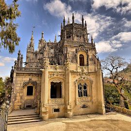 Regaleira by Julio Cardoso - Buildings & Architecture Public & Historical ( século xx, quinta da regaleira, sintra, portugal, carvalho monteiro )