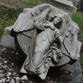 Broken tombstone by Jean Plessis - City,  Street & Park  Historic Districts ( tombstone, angel, graveyard )