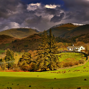 Conniston by Angel Weller - Landscapes Mountains & Hills ( hill, mountains, grass, trees, house )