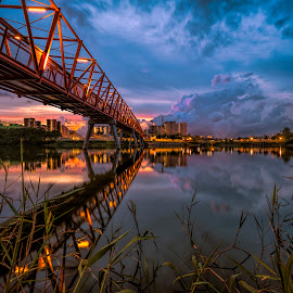 Punggol Wetland Park by Gordon Koh - City,  Street & Park  City Parks