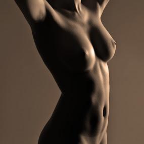 by Jean-marc Nehmé - Nudes & Boudoir Artistic Nude ( bronze, nude, ligth, female, shade, curves )