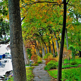 Path by he Lake by Gary Massey - City,  Street & Park  Neighborhoods ( geneva lake, williams bay )