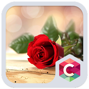 Beautiful Red Rose Theme