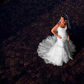 Center of Attention by Louis Brems - Wedding Bride ( davenport, iowa, illinois, quad cities, father daughter dance, food, bridal portraits, wedding, wedding reception, bettendorf, dance, moline, rock island )
