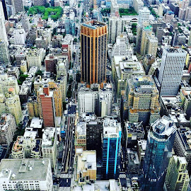 by Ant Veal - City,  Street & Park  Skylines ( nyc, new york city, cityscape, new york )