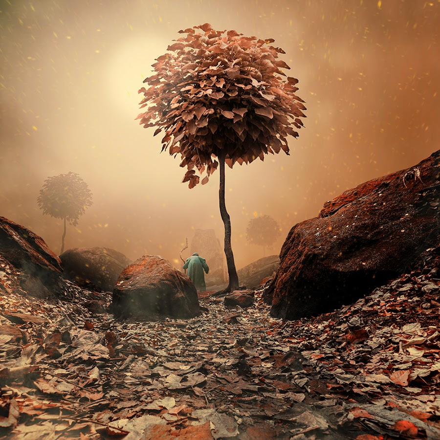 The secret path by Caras Ionut - Digital Art Places ( http://www.carasdesign.ro/tutorials )