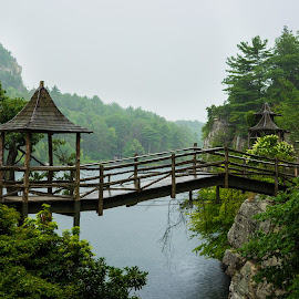 Wooden Bridge at Mohonk Mountain House by Erina Moriarty - Landscapes Mountains & Hills ( water, mohonk, mountains, flowers & plants, outdoor, summer, victorian, lake, bridge, landscape )