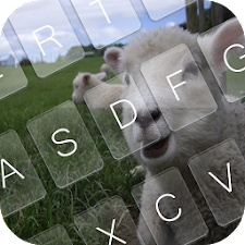 Happy Sheep Year Keyboard