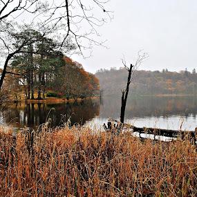 Loch Lomond by Mohd Aidy Faizal Johari - Landscapes Travel