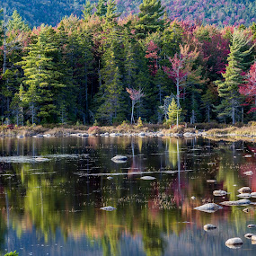 Autumn Pond Reflection by Ed & Cindy Esposito - Landscapes Forests ( reflection, autumn, foliage, colors, trees, rocks, kancamagus highway )